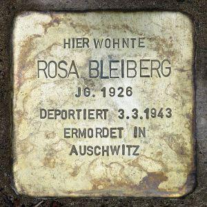 stolperstein at prenzlauerberg for rosa bleiberg