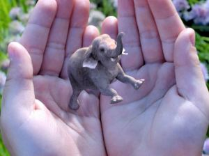 magic leap elephant in hand [not room]