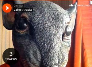 a city rat on soundcloud